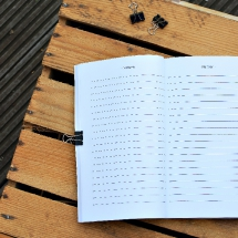Reisebuch -Die Welt- Notizen, Reisetagebuch